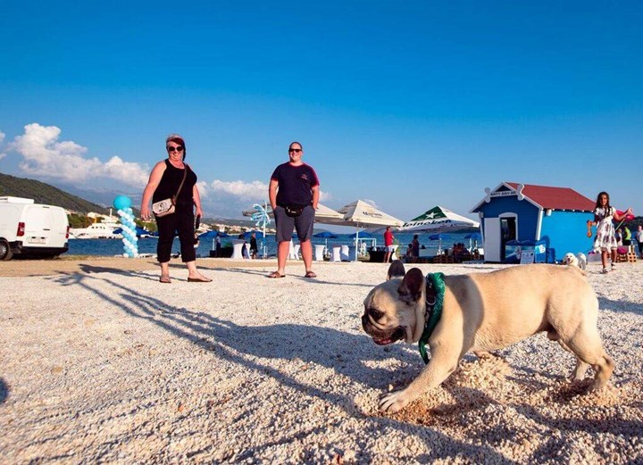 Monty's Dog Beach & Bar -Hundestrand 16
